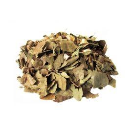 Chá de Abacateiro  (Persea Americana) 100gr