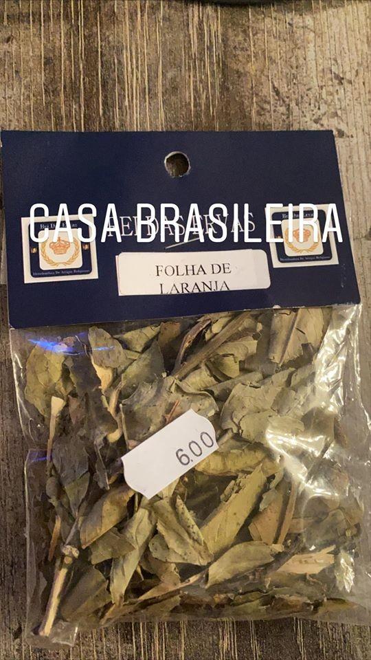 FOLHA DE LARANJA