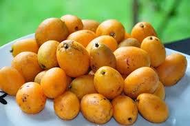 Polpa de fruta caja Brasfrut